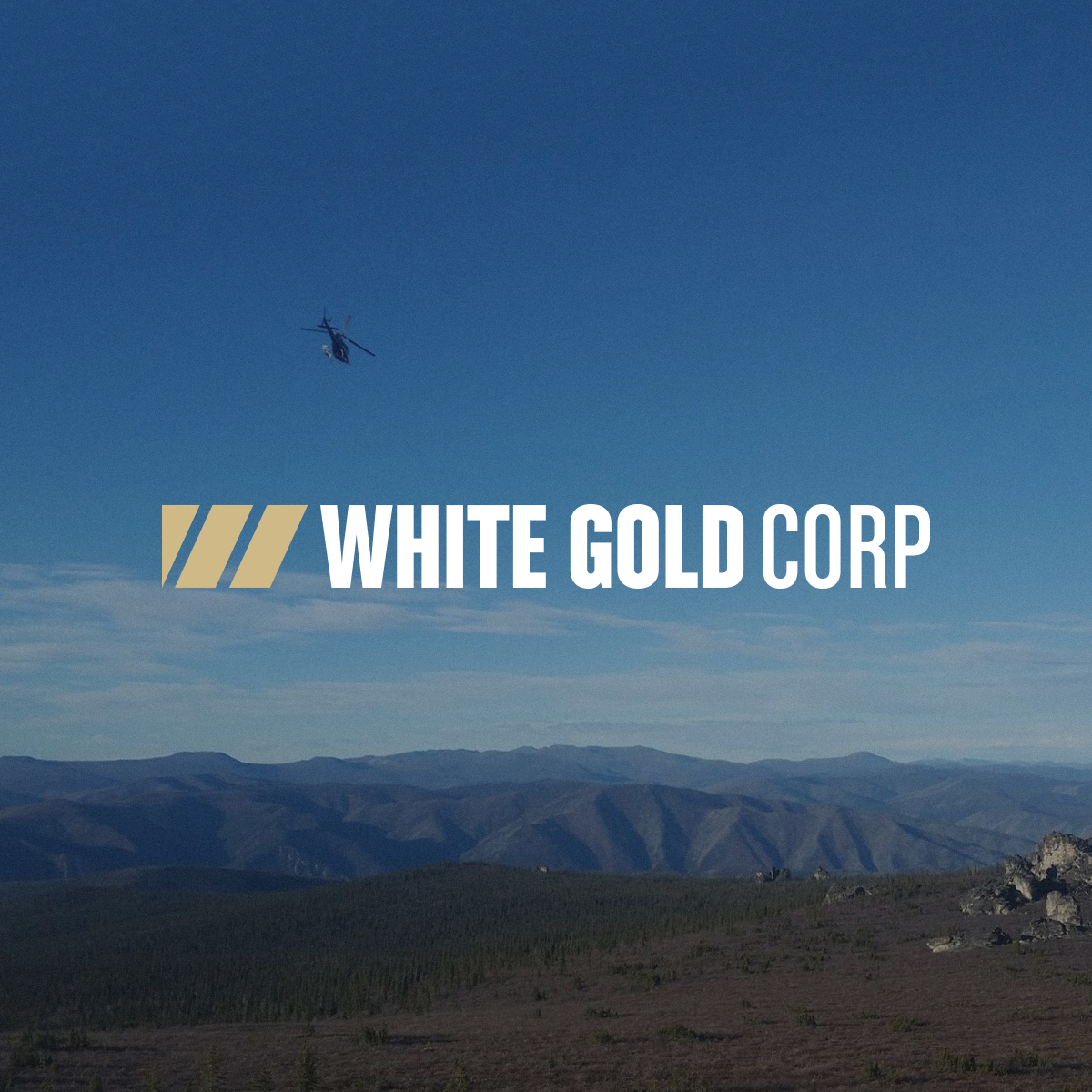 White Gold Corp: Releases